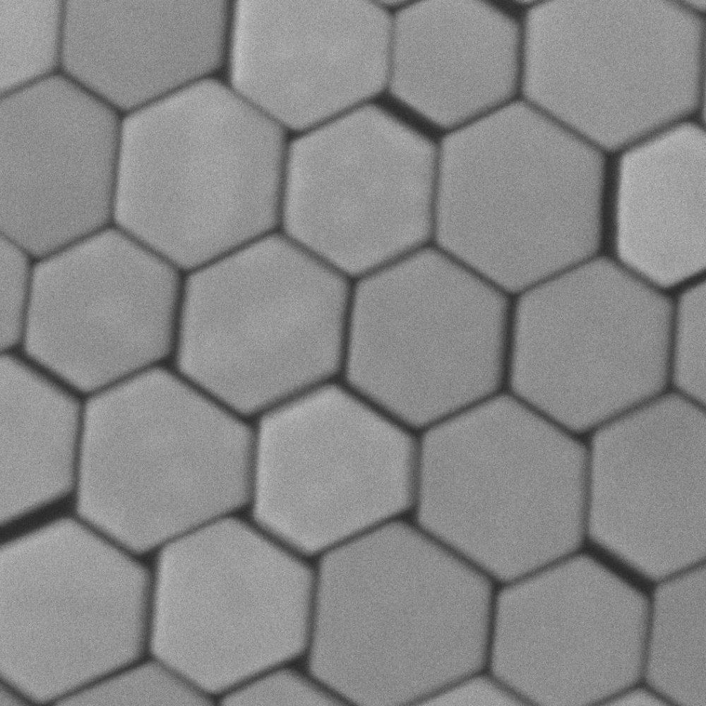au-nanoplates